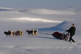 Finským Laponskem na běžkách