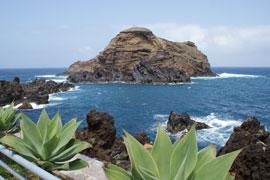 Přidali jsme nový termín jarní Madeiry