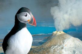 Martin Loew promítá Island