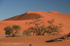 Objevte kouzlo a bohatství Namibie