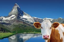Švýcarsko  – diashow Martina Loewa