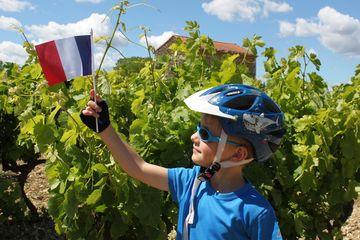 Ve vinicích Lubéronu
