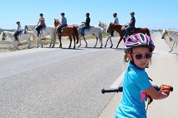 Provence na kole v pohodě - cesta do St. Maries de la Mer