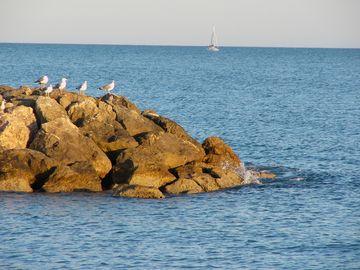 Pláže Palavas-les-Flots