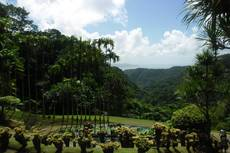 Výhledy v botanické zahradě Jardin de Balata