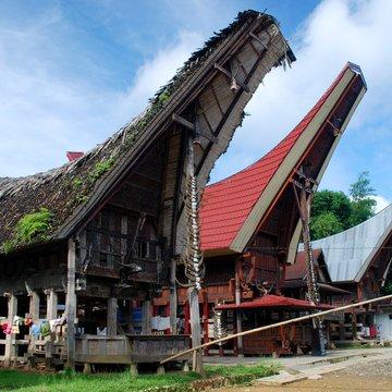 Torajské domy na Sulawesi mají tvar bůvolích rohů